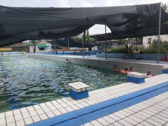 柳树林游泳池