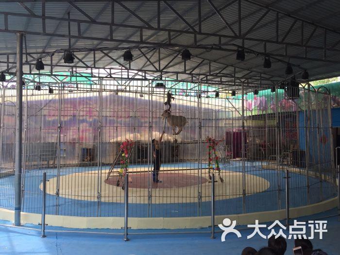 御禾动物园-游乐设施图片-廊坊周边游-大众点评网