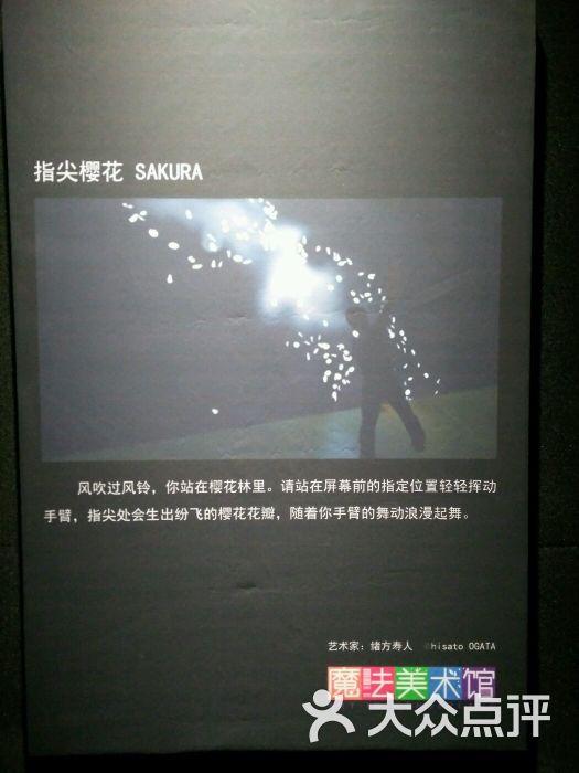青岛魔法美术馆像素森林_青岛万象城魔法美术馆互动艺术展线路推荐