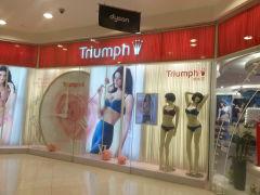 Triumph的图片