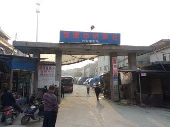 葵潭华侨旅社-停车场