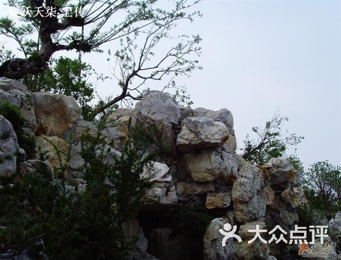 吴淞炮台湾湿地森林公园-假山图片-上海周边游-大众