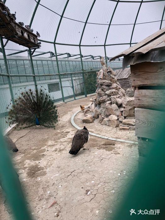 晶宝温泉农庄图片 - 第1张