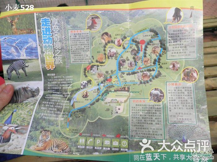 青岛森林野生动物世界可以骑马哦图片-北京动物园