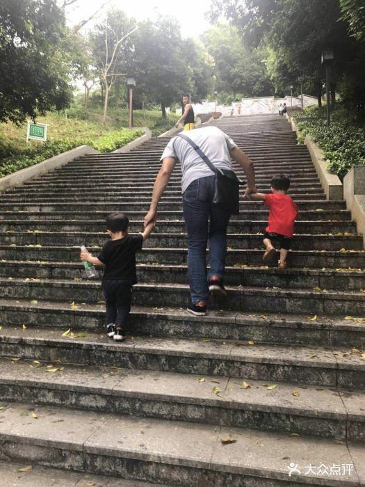 华佗山公园-图片-中山周边游-大众点评网