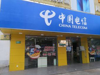 中國電信(浦江分局)