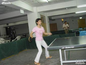蓝天乒乓球俱乐部