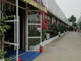 熊猫婚嫁文化产业园