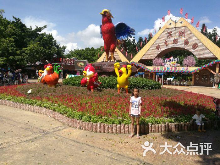 深圳野生动物园门面图片 - 第25张