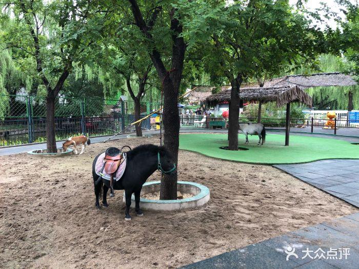 朝阳公园亲子动物园图片 - 第124张