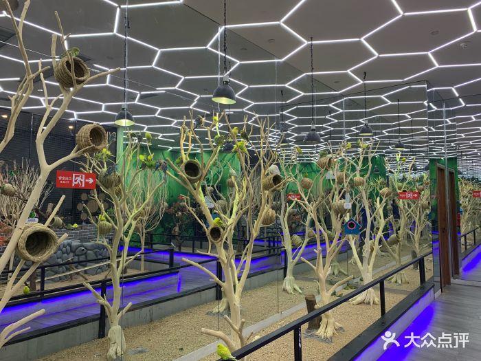 未来动物城主题公园图片 - 第55张