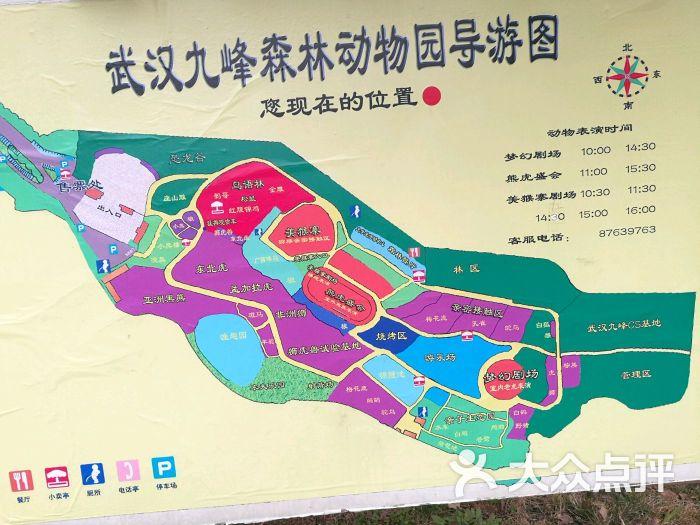 九峰森林动物园-图片-武汉周边游-大众点评网