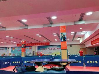 龙港镇乒乓球馆