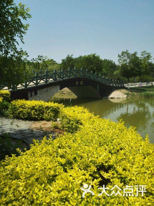 塘沽森林公园小桥图片 - 第383张