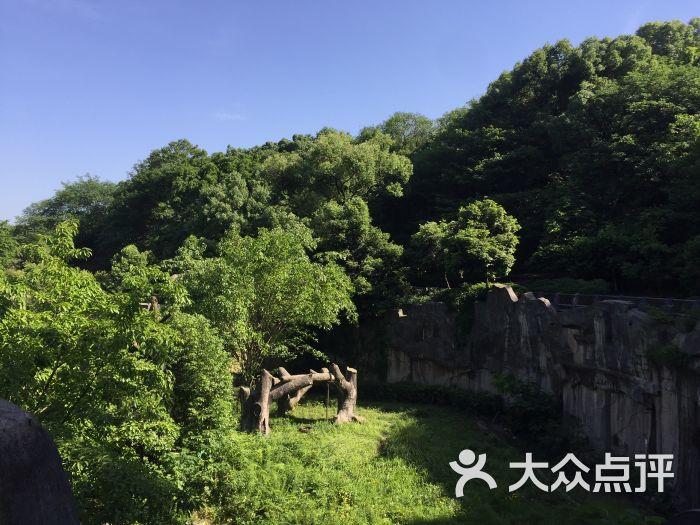 重庆动物园图片 - 第20张