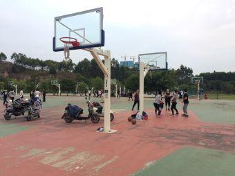福大室内篮球场