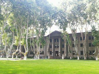 东南大学中大院
