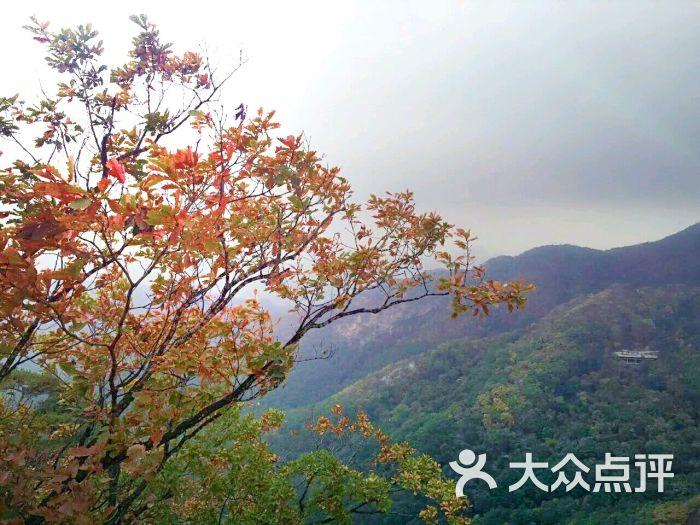 丹东凤凰山风景区的全部评价-凤城市-大众点评网