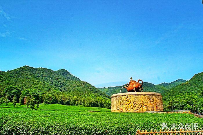 西山森林公园-图片-杭州周边游-大众点评网