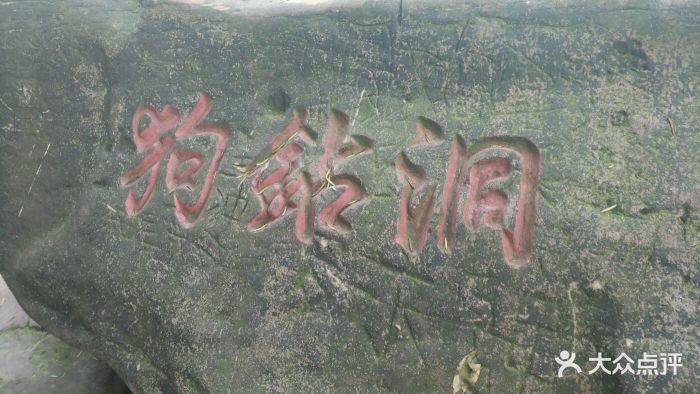 圣灯山国家森林公园图片 - 第125张