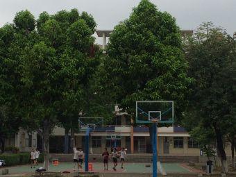 顺德凤城实验学校