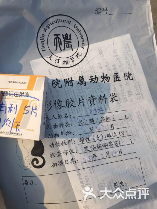天津农学院附属动物医院图片 - 第7张