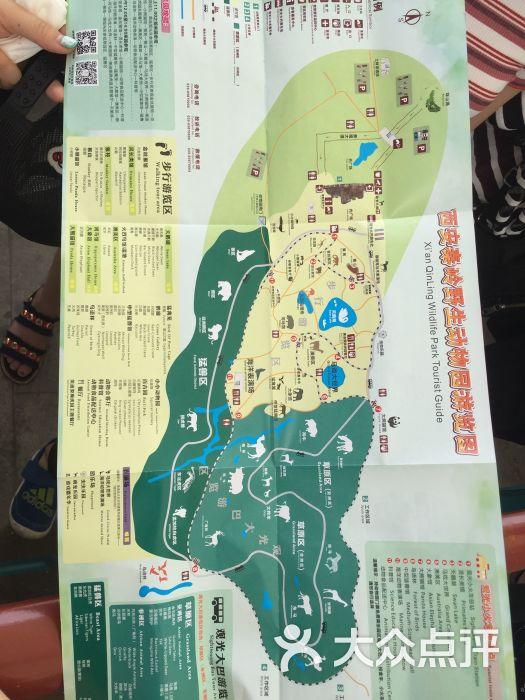 西安秦岭野生动物园图片 - 第25张