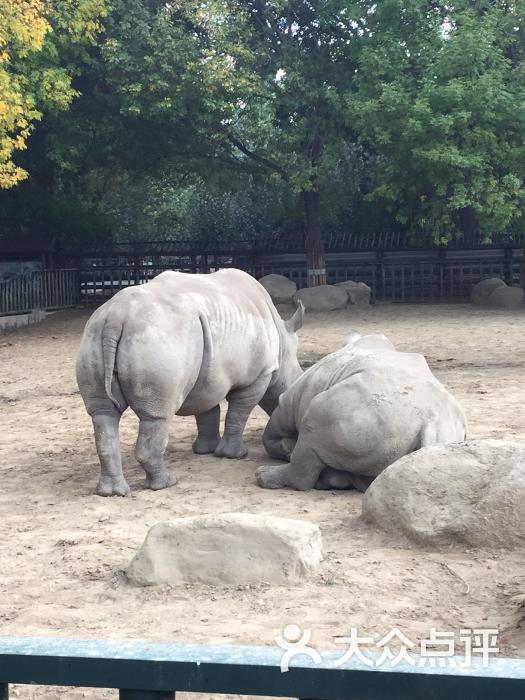 天津动物园图片 - 第1张
