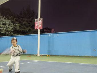泰尼斯网球俱乐部