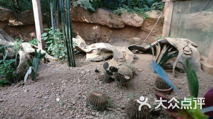 南昌新动物园图片 - 第13张