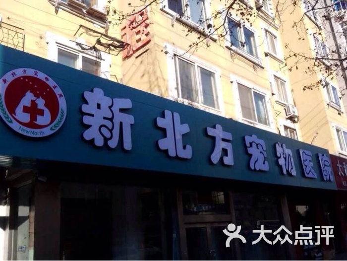庚医院怎么样_宠颐生新北方宠物医院图片-北京宠物医院-大众点评网