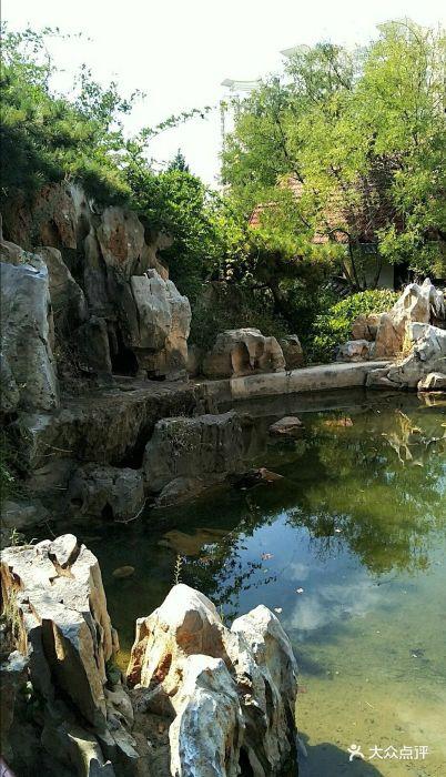 贮水山儿童公园图片 - 第3张