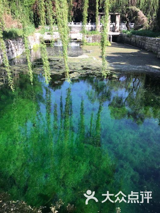 泉林泉群风景名胜区-图片-泗水县周边游-大众点评网