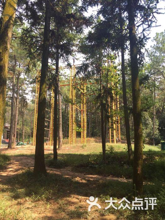 象山森林公园图片 - 第78张
