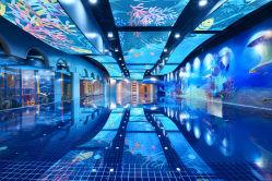 ABC Swim国际亲子游泳(河西中心)