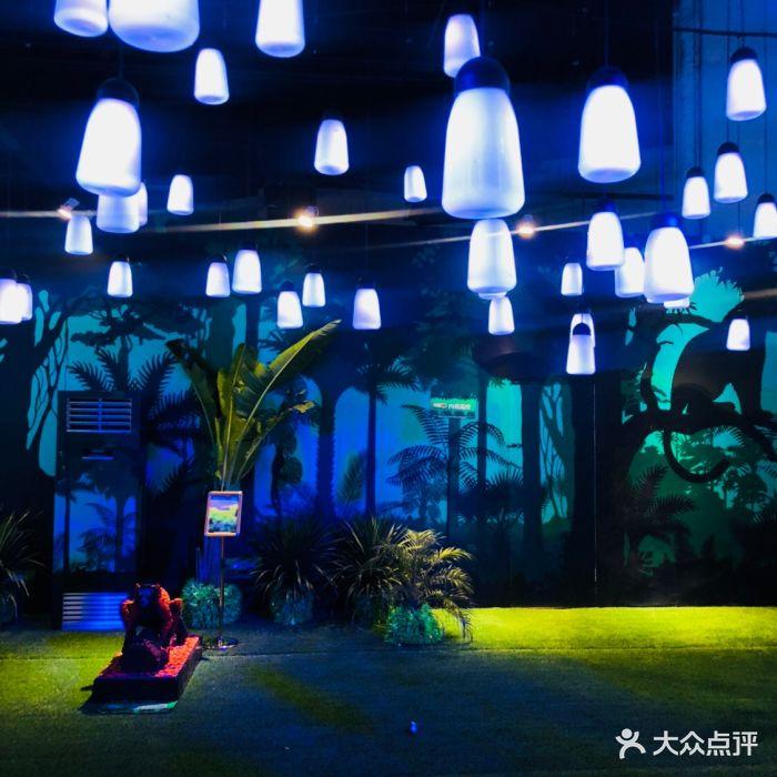 乐高动物王国环保展鸟巢站图片 - 第1张