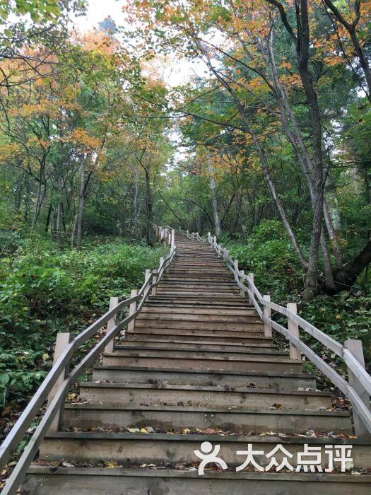 岗山国家森林公园-图片-新宾满族自治县周边游-大众