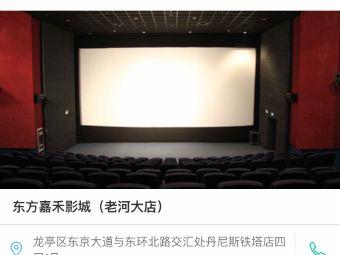东方嘉禾影城(老河大店)