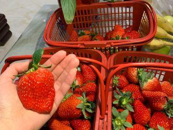 奶油草莓园