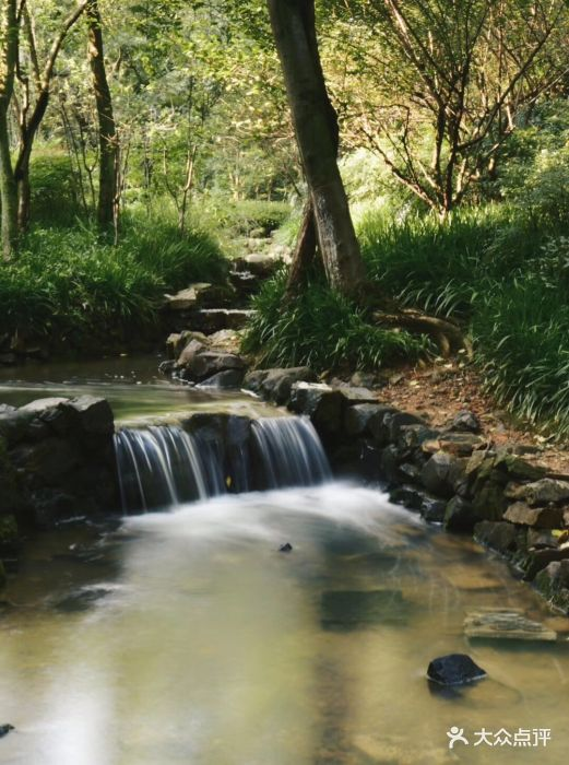 杭州半山国家森林公园图片 - 第25张