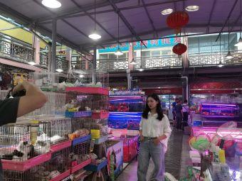 南禅寺花鸟鱼虫市场
