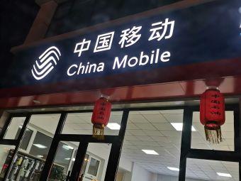 中国石油加气站(CNG加气站)