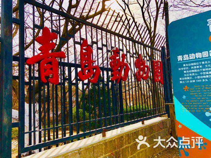 青岛动物园图片 - 第18张