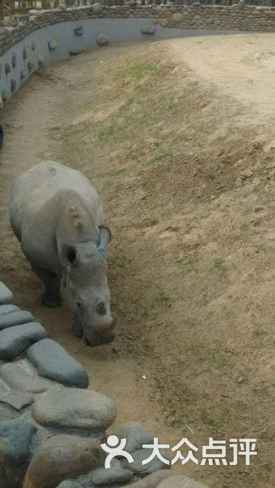 北京野生动物园图片 - 第9张