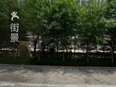 歌尔大餐厅电话,地址,营业时间 潍坊美食