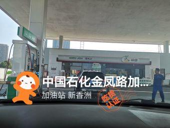 中国石化金凤路加油站
