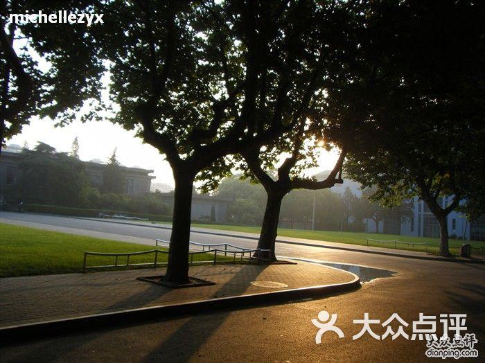 南京农业大学 主楼前的法国梧桐图片 南京学习培训图片