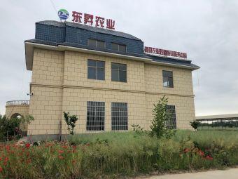 东昇生态农业发展有限公司