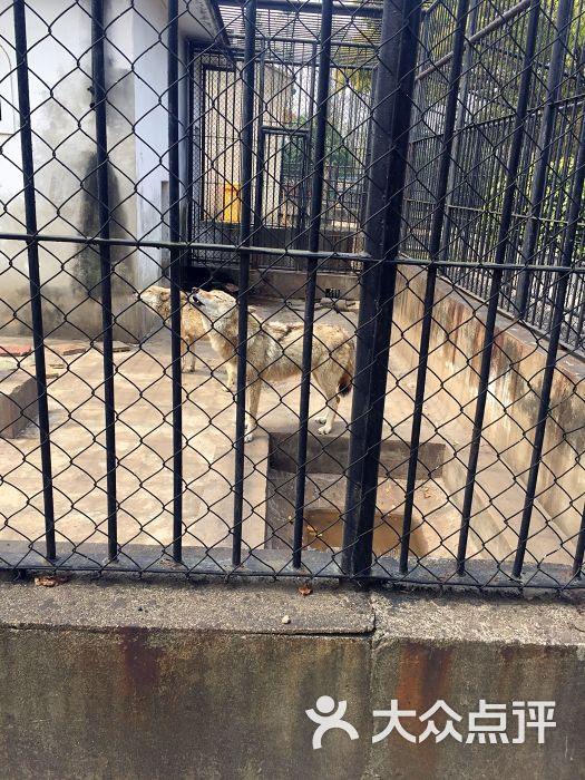 南通动物园图片 - 第40张