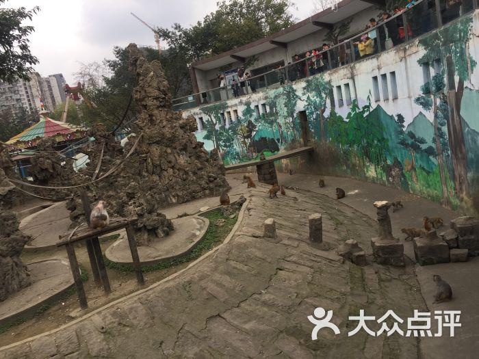 成都动物园景点图片 - 第30张